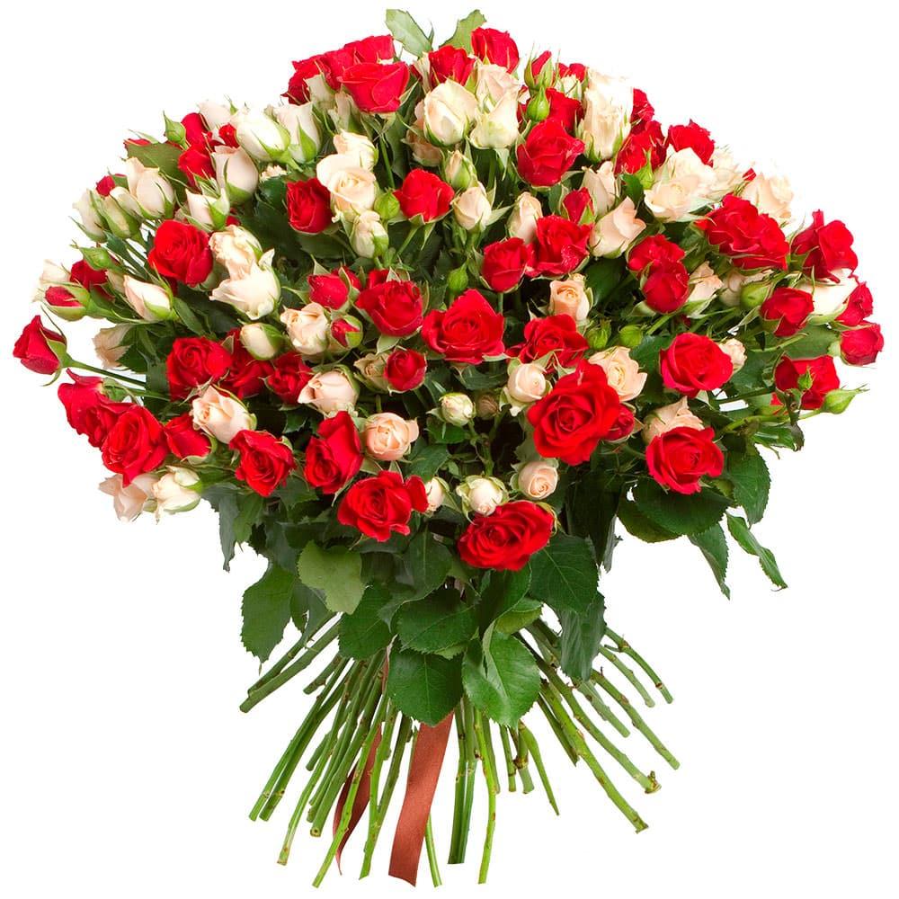 Цветы поздравления картинки